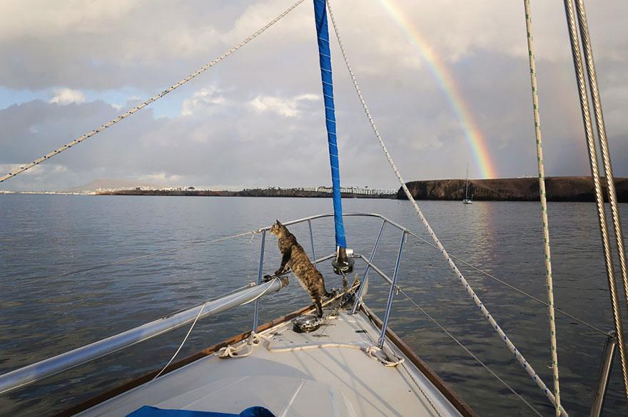 «Джорджи отлично себя чувствует на яхте и крепче держится на ногах, чем мы».