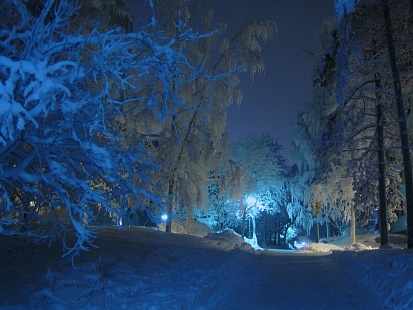 Минувшая ночь вМосковском регионе стала самой холодной сначала осени