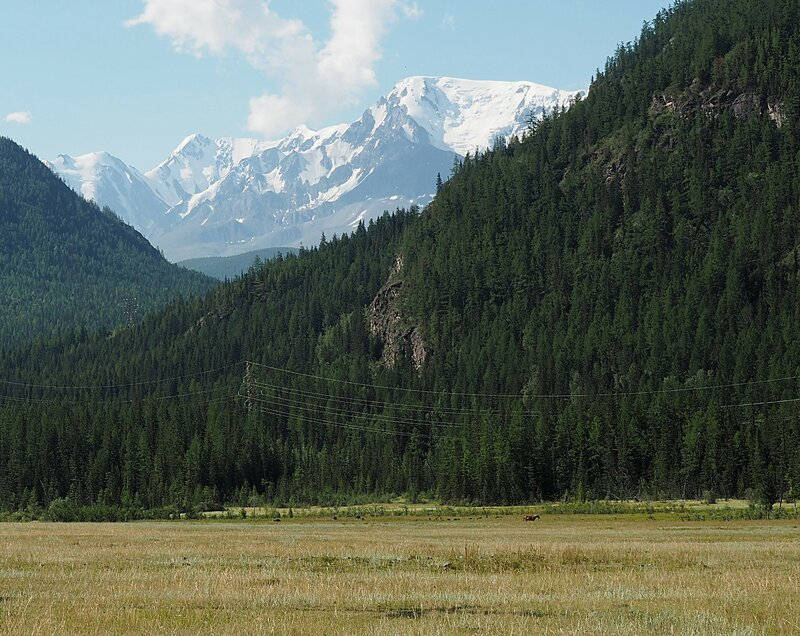 Алтай, Южно-Чуйских хребет (Altai, South Chui Ridge)