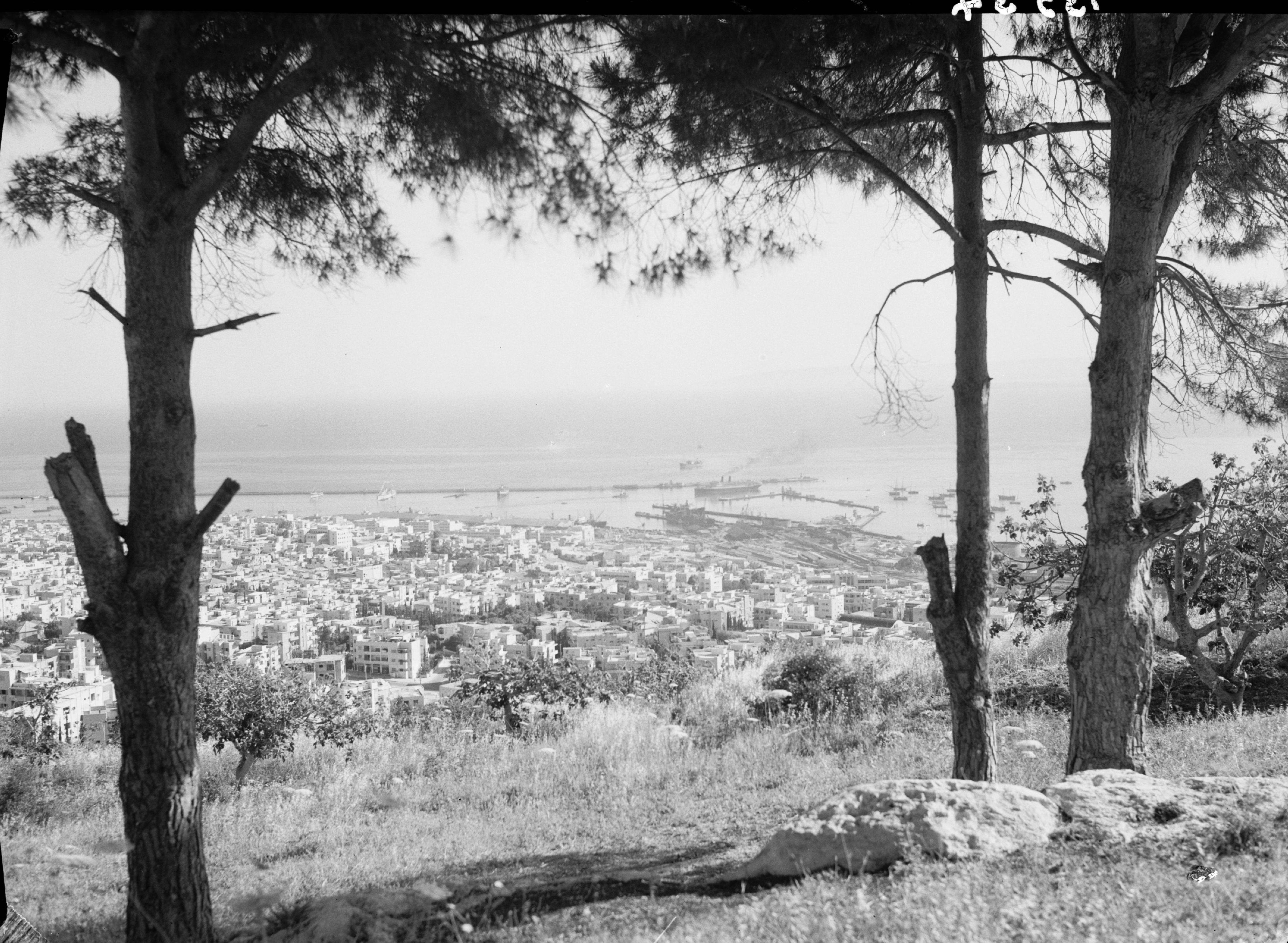 Вид с горы Кармель, май 1946