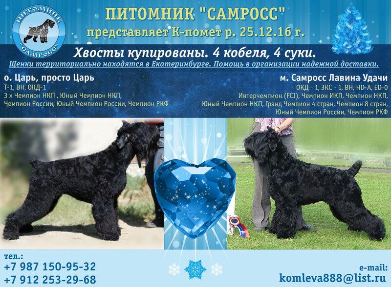https://img-fotki.yandex.ru/get/57551/192973091.ce/0_1315eb_42acd7cd_XL.jpg