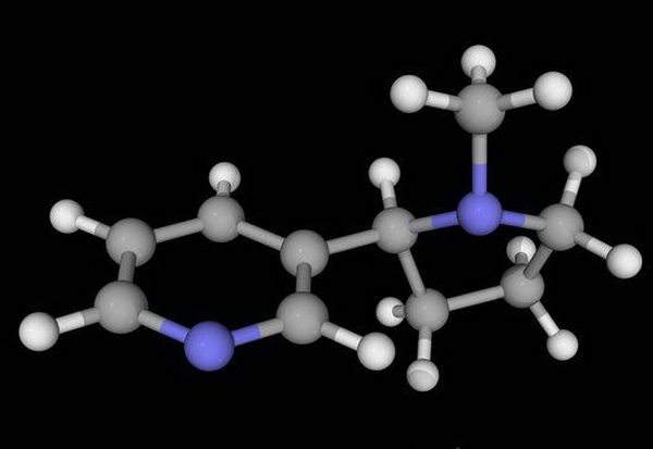 Никотин может защитить стареющий мозг