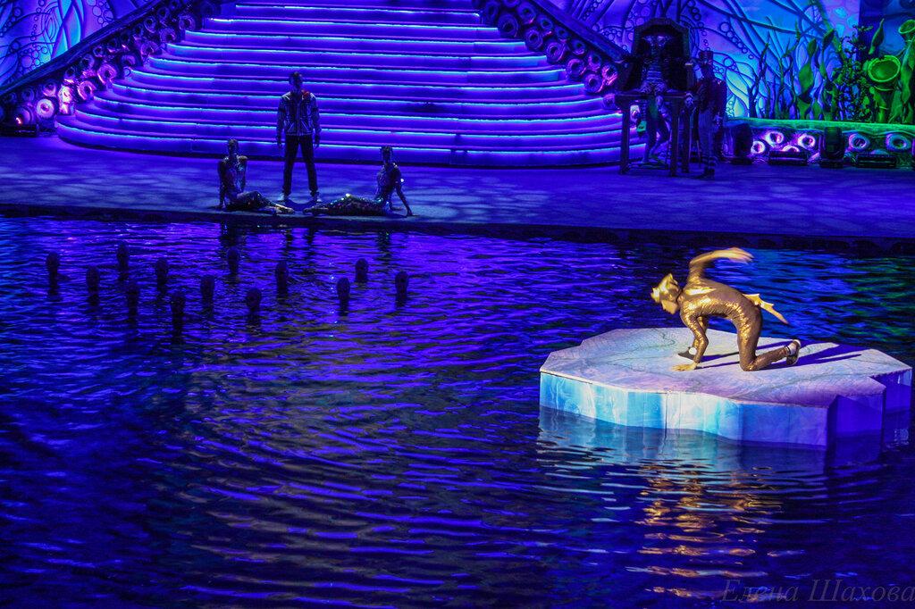 Олимпийский - бассейн-7.jpg