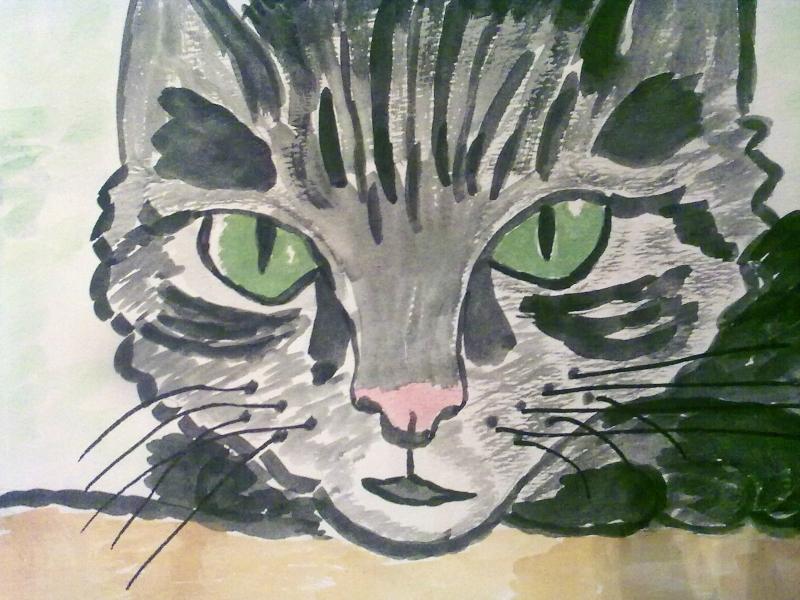 Кот  с  зелеными  глазами.