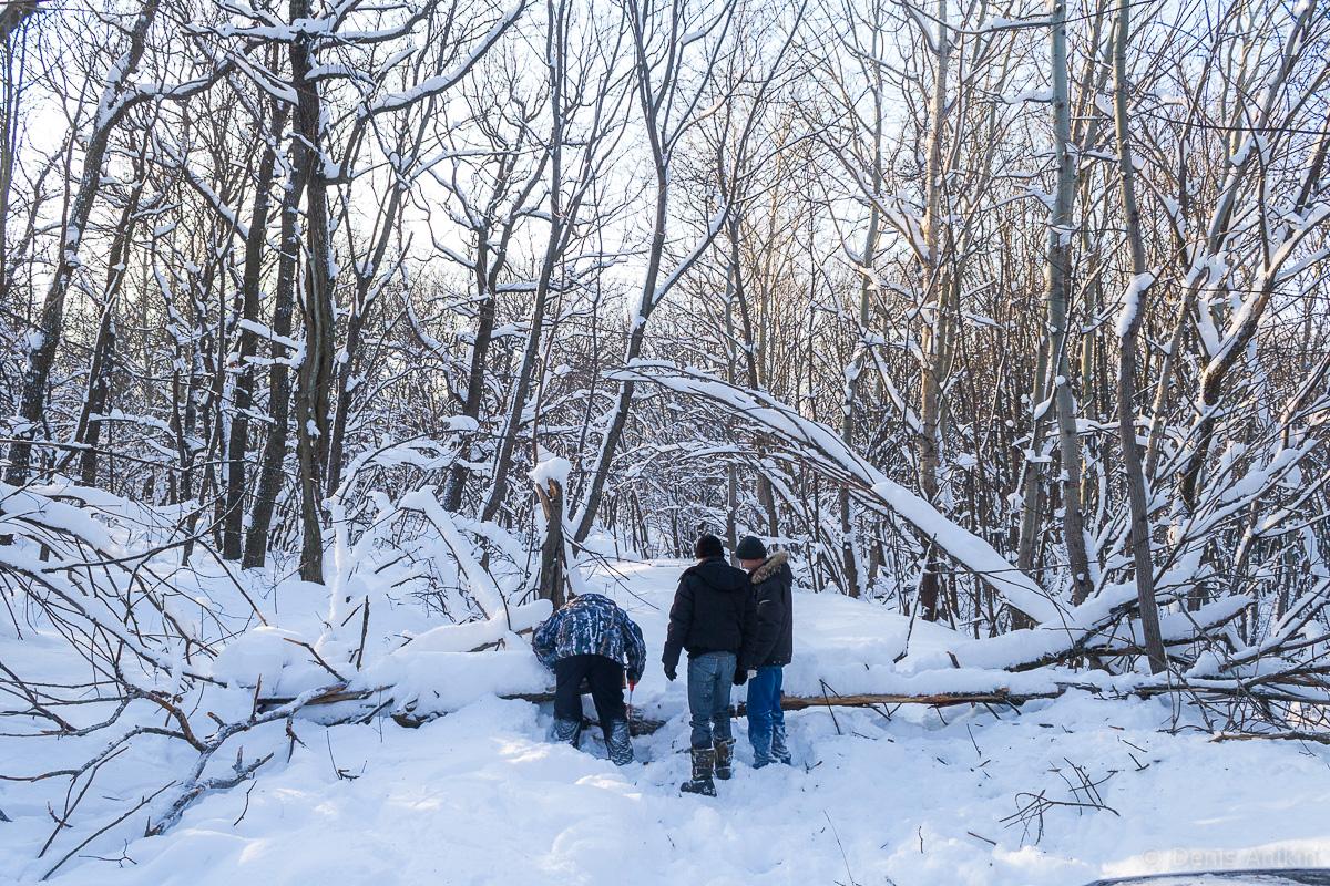 саратов лес кумысная поляна зима покатушка фото 7
