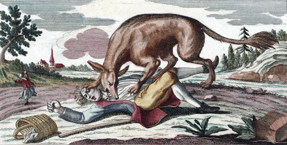 Bête_du_Gévaudan_(1764).jpg