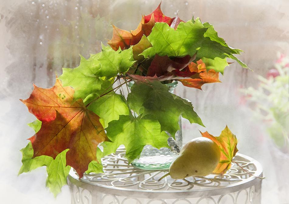 Мартом мимоза, открытки с листьями осень