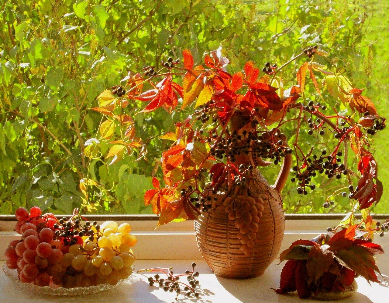 Открытка доброе утро осень виноград, днем рождения женщине
