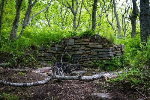 Каменная кладка в лесу