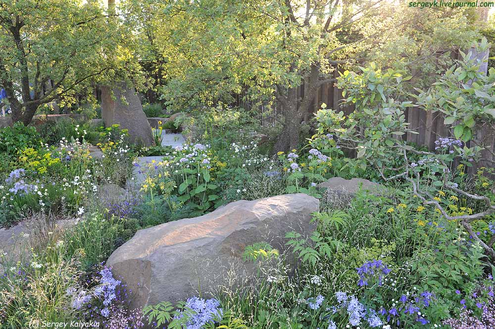 Cleve West Garden 2016 (2).JPG