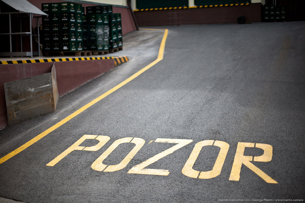 4. В Чехии пивные бутылки не выбрасывают в мусорки, а сдают в магазины, откуда их увозят обратн