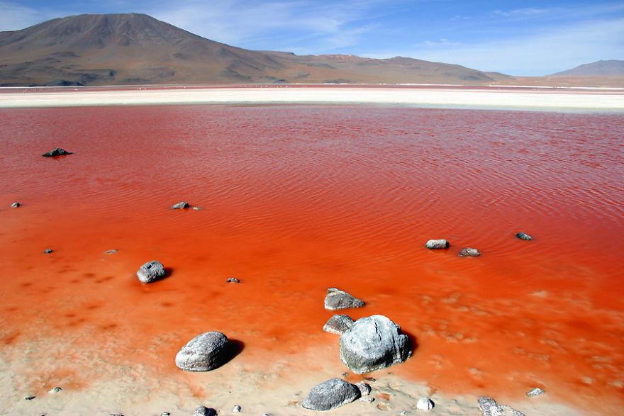 Минеральное озеро Лагуна-Колорадо, Боливия.