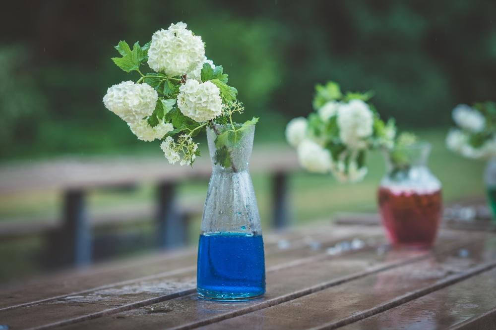Еще один способ оживить стеклянную вазу сцветами— добавить пищевой краситель вводу. Некоторые цве