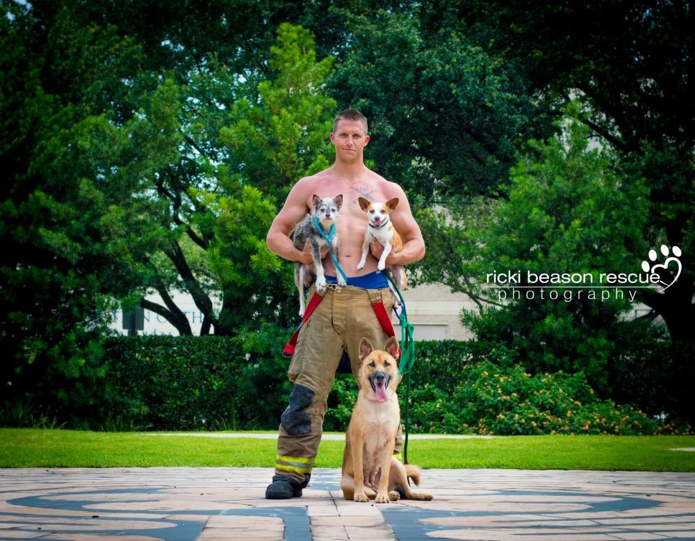 © Ricki Beason Rescue Photography  «Наша главная задача— показать, что бездомные собаки такж