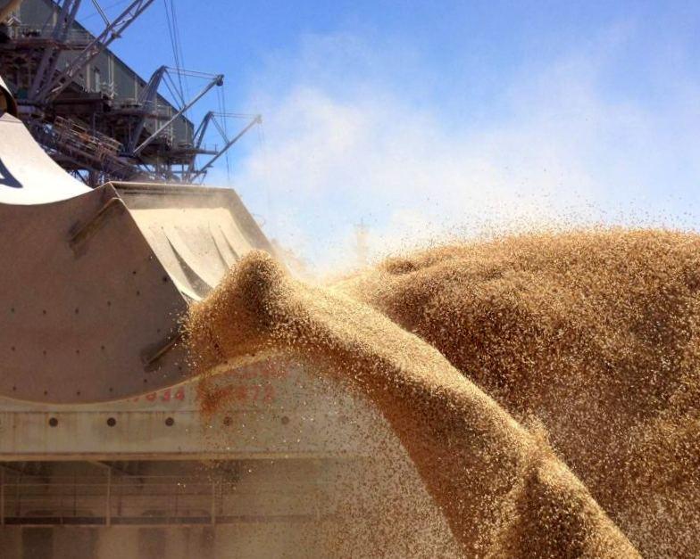 Украина увеличила экспорт зерна имуки практически на1 млн тонн