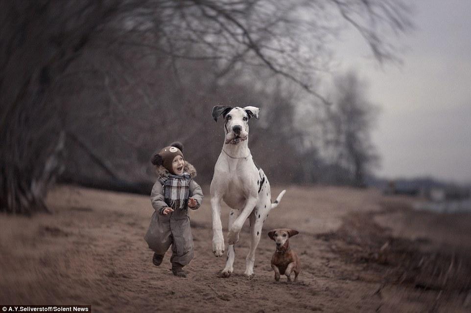 Илья, 2,5 года, бегает наперегонки с догом Шейном и таксой, вполне возможно страдающей комплексом неполноценности.