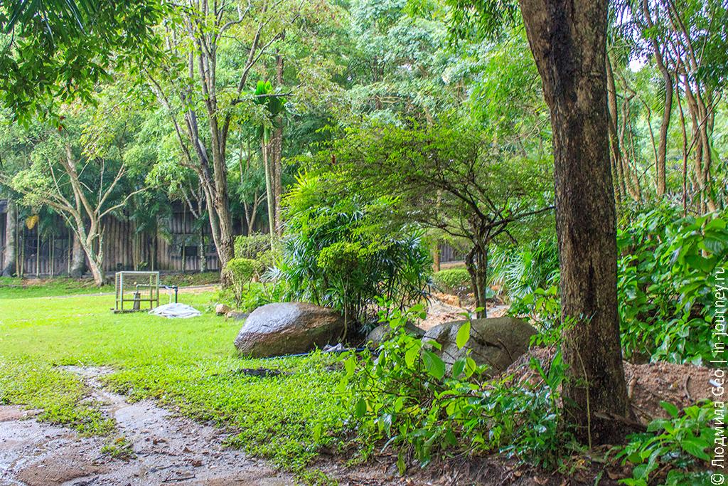 природа в зоопарке као кео