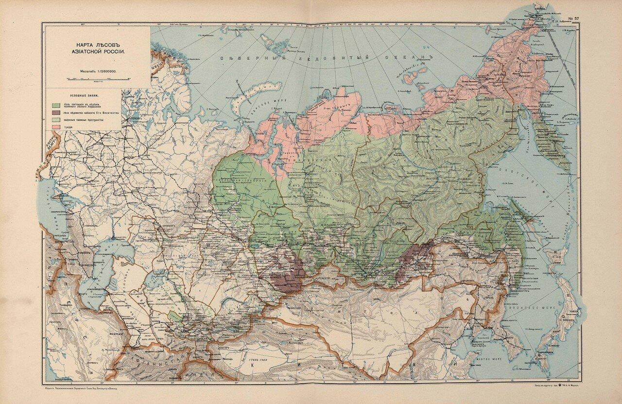 48. Карта лесов Азиатской России