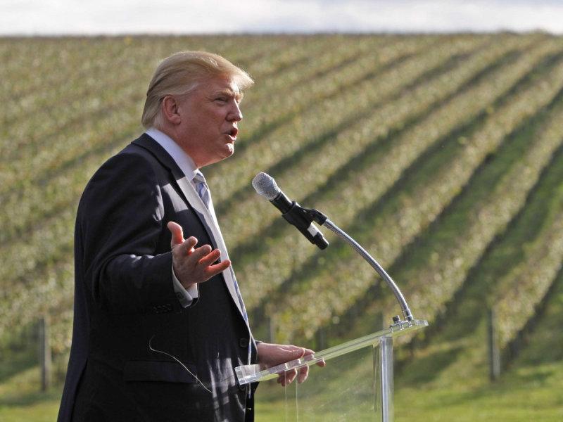 Дональд Трамп на фоне виноградных лоз ведет пресс-конференцию в своей винодельне в Шарлоттсвилл