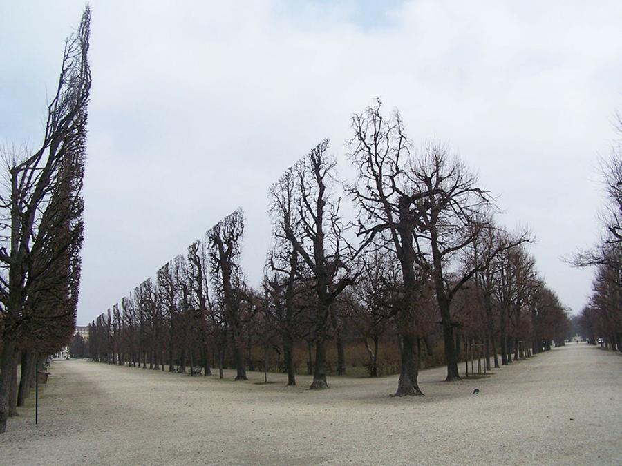 6. Парк для перфекциониста, Шёнбрунн, Австрия