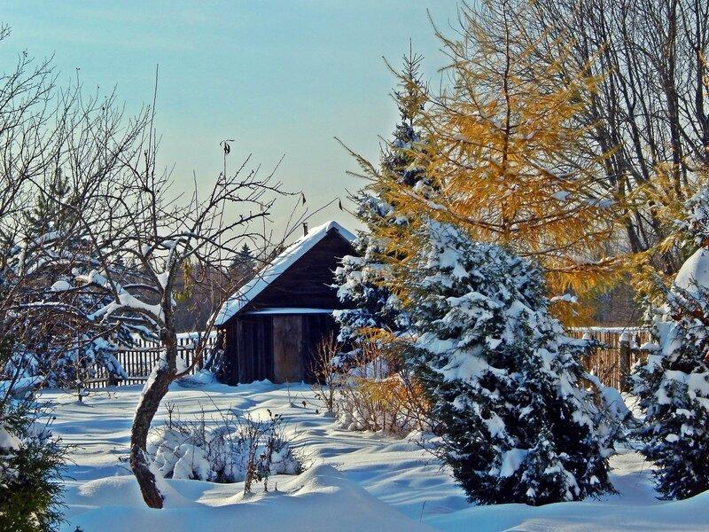 Зима осенняя