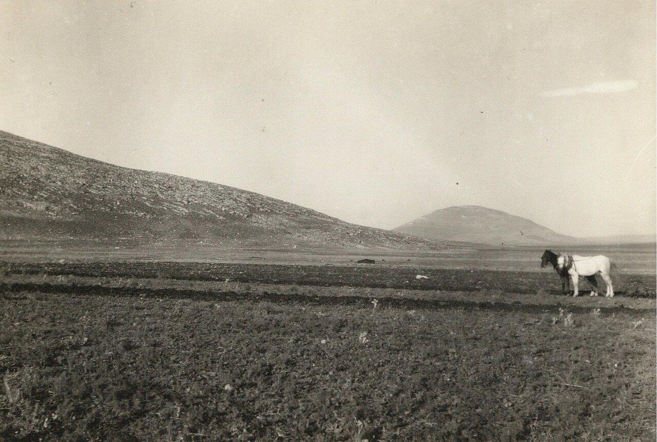 Вид горы Фавор