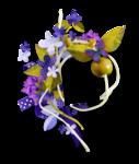 gardenoflight_cluster2.png
