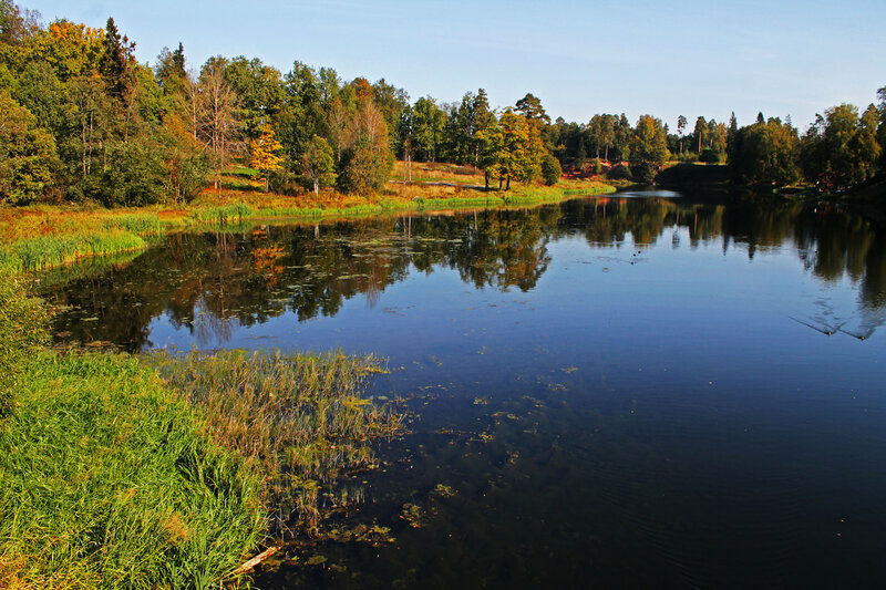 осень у воды 3