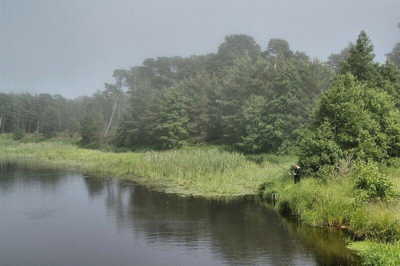 Рыбылка на туманной реке.