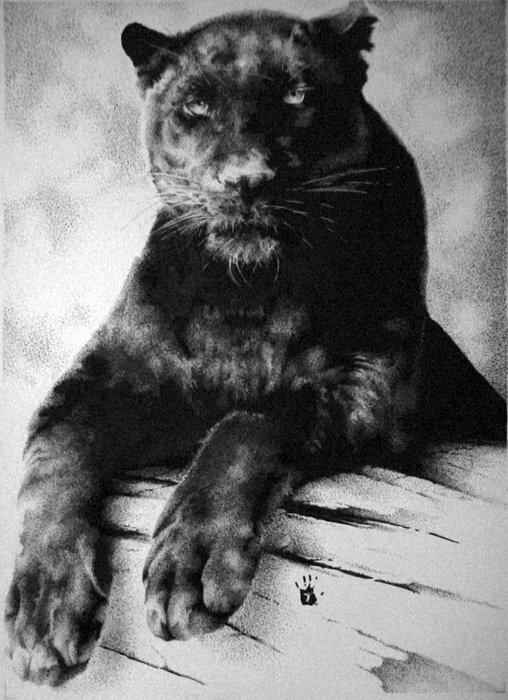 """Предпросмотр - Схема вышивки  """"Черная пантера """" - Схемы автора  """"anastasia896 """" - Вышивка крестом."""