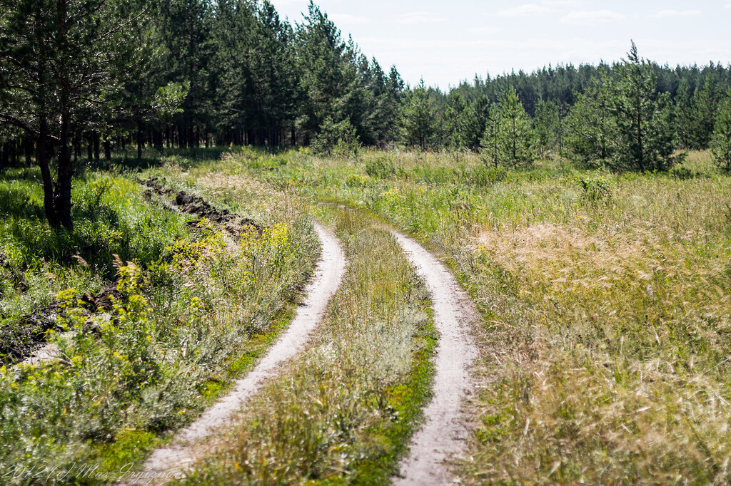 Дорога на Михайловку