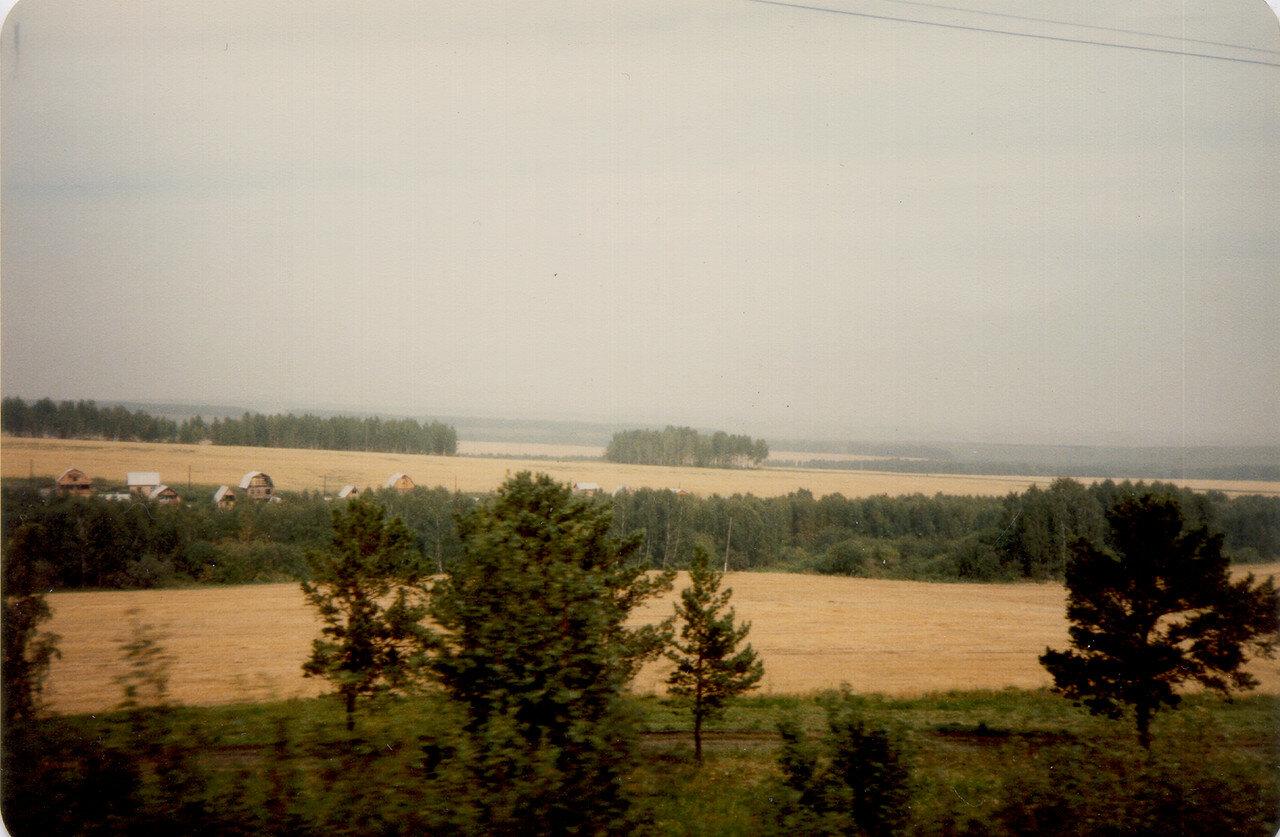 10. Пшеничные поля России