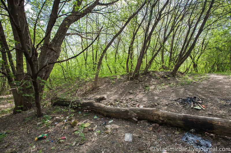Бывший парк усадьбы Ивановское