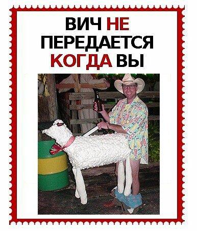 Божья коровка, смешные картинки про спид