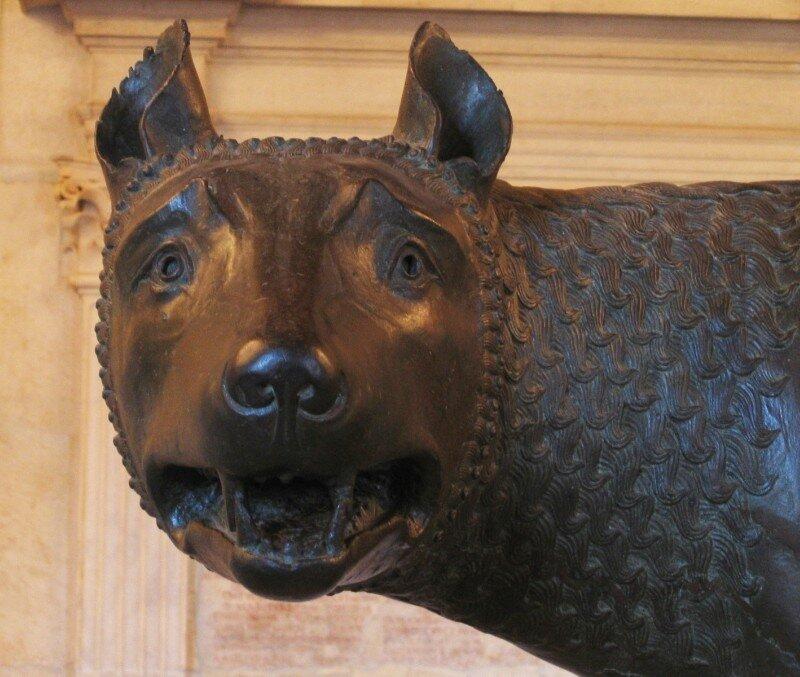 Капитолийская волчица