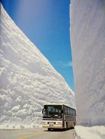 Japanese snow япония снег.jpg