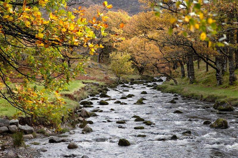 Watendlath Beck; Lake District;