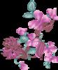 Flowerses Mix