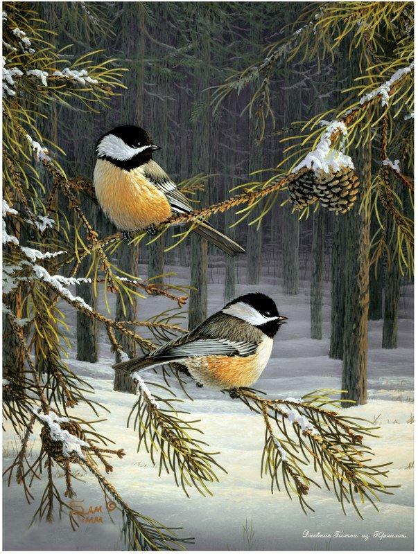 Синицы в зимнем лесу.