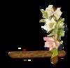 Цветы клипарты