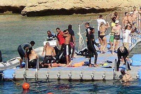 Шарм-эль-Шейх: акулы в Красном море.
