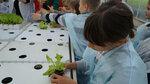 salat06.jpg