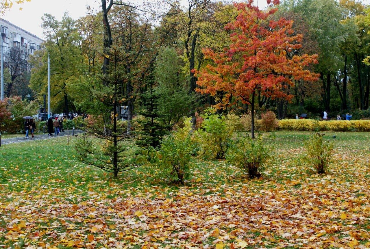 Осенний парк Славы