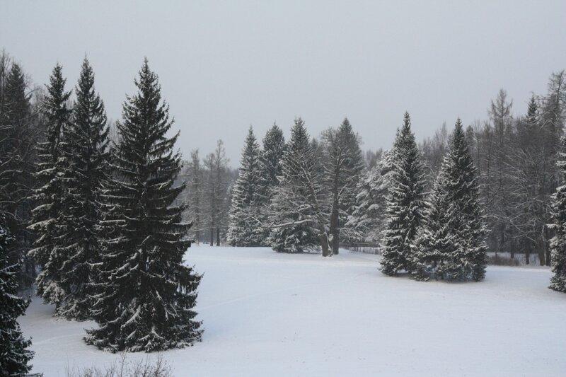 http://img-fotki.yandex.ru/get/5801/kameneva69.7/0_4bccc_ccdb3559_XL.jpg