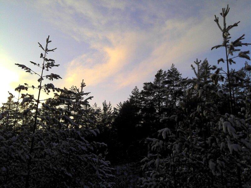 Лыжи 08.01.2011