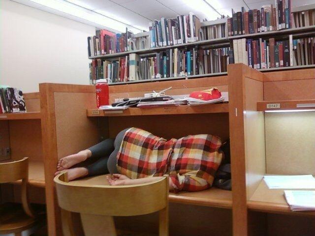 спящие в библиотеке