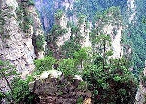 В китайской провинции Хэйлунцзян, которая граничит с Приморьем, насчитывается более 200 заповедников