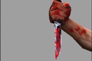 Психически больной житель Приморья подозревается в убийстве