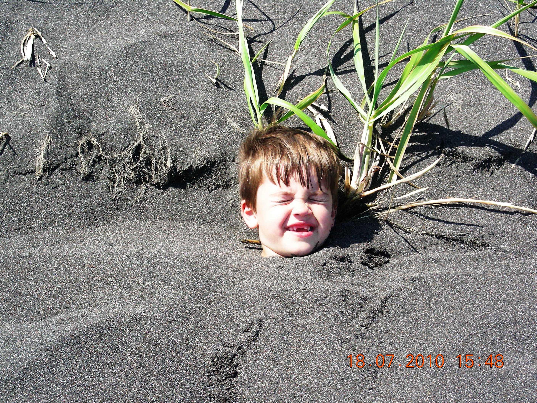 Выросло на пляже.
