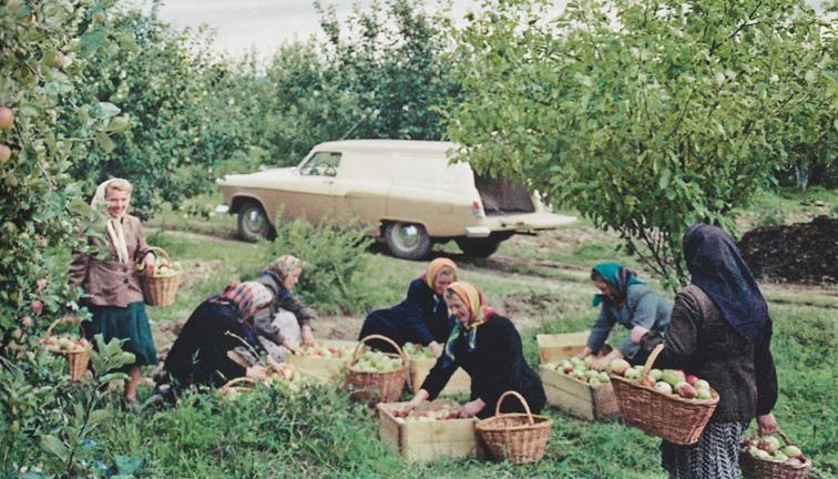 Заводской опытный фургон ГАЗ-22А «Волга».png